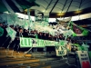 Eintracht Fankfurt - VfL Wolfsburg