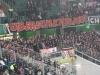 VfL Wolfsburg - Energie Cottbus