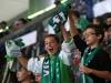 VfL Wolfsburg - Hertha BSC